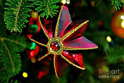 Red Finned Ornament Print by Rich Walter