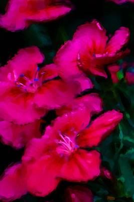 Red Floral Study Print by David Lane