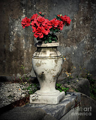 Marble Tomb-stones Photograph - Red Flowers In Vase by Perry Webster