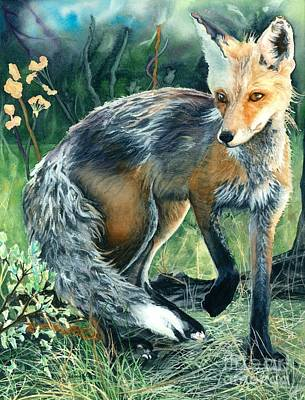 Red Fox Painting - Red Fox- Caught In The Moment by Barbara Jewell