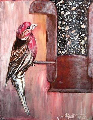 Red Grosbeak Finch Original by Rowlf Welch