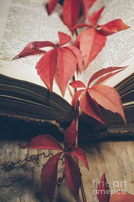 Red Ivy Print by Jelena Jovanovic