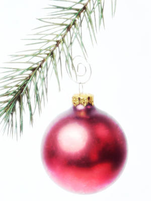 Red Ornament Print by Vicki McLead