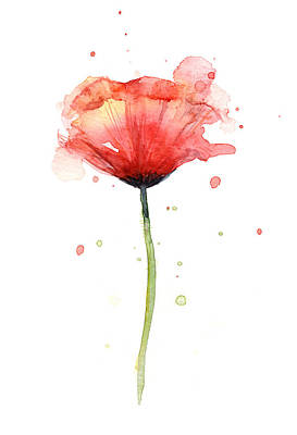 Floral Watercolor Painting - Red Poppy Watercolor by Olga Shvartsur