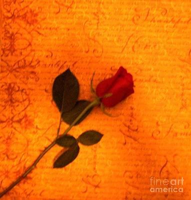Red Rose Against The Wallpaper Original by Marsha Heiken