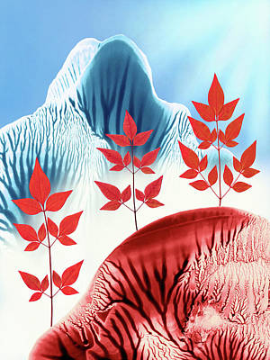 Red White And Blue Mixed Media - Red Rose Quarts And Serenity Blue Landscape 1 by Amy Vangsgard
