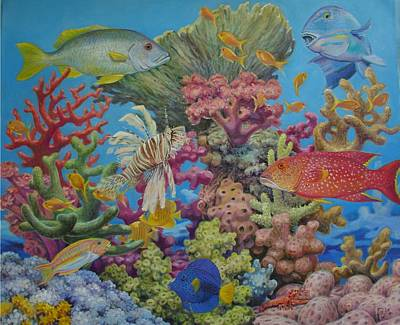 Red Sea Reef Print by Henry David Potwin