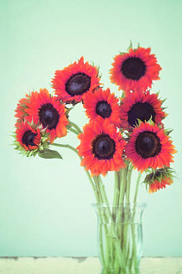 Floral Photograph - Red Sunflowers by Amy Tyler