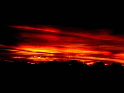Photograph - Red Sunset by Kevin Steven