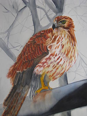 Red Tail Hawk Painting - Red Tail Hawk by Emmanuel Turner
