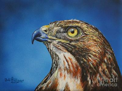 Most Popular Drawing - Red-tailed Hawk......honor by Bob Williams