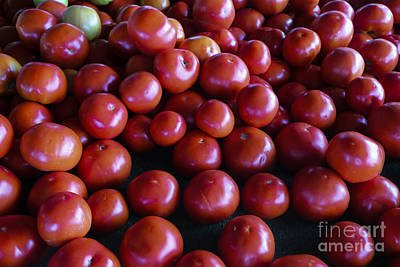 Vegatables Photograph - Red Tomatoes by Thomas Marchessault