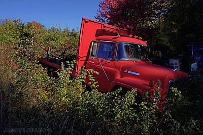 Bushes Digital Art - Red Truck by Jerry LoFaro