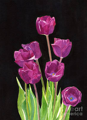 Red Violet Tulips With Black Background Print by Sharon Freeman