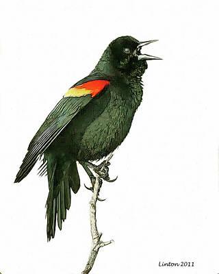 Blackbird Digital Art - Red-winged Blackbird by Larry Linton