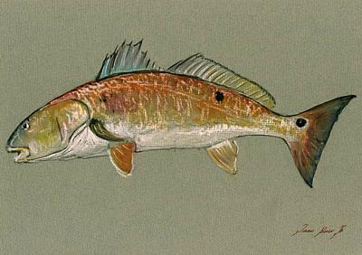 Redfish Watercolor Painting Print by Juan  Bosco
