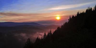 California Photograph - Redwood Sun by Chad Dutson