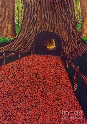 Explore Drawing - Redwoods Excursion  by Ishy Christine Degyansky