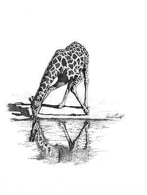 Terrestrial Drawing - A Tall Drink Of Water by Jennifer Campbell Brewer