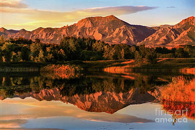 Photograph - Reflections by Greg Summers