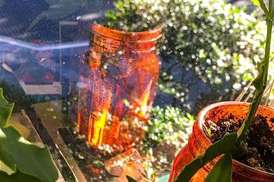 Reflections Of A Jar Print by Kendall Tabor