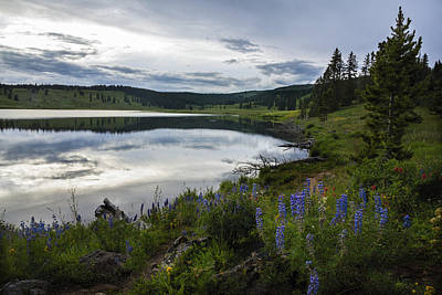 Dumont Lake Reflections Print by Dave Dilli