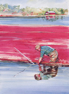 Reflections Of The Cranberry Man Print by P Anthony Visco