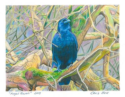Regal Raven Original by Chris Bell