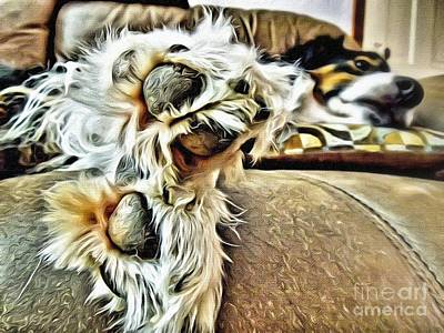 Dog Hair Photograph - Relaxing by AK Photography