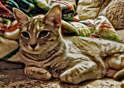 Kitten Digital Art - Relaxing Miyu by David G Paul