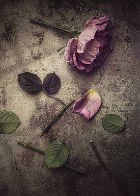 Broken Heart Photograph - Remnants by Amy Weiss
