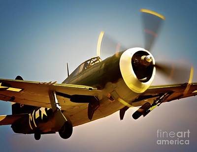 Planes Of Fame Photograph - Republic P-47 Thunderbolt Thunder Jug by Gus McCrea