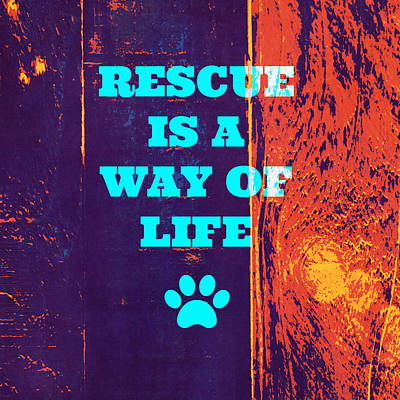 Must Art Mixed Media - Rescue Is A Way Of Life 2 by Brandi Fitzgerald