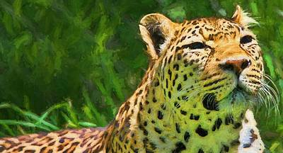 Leopard Mixed Media - Resting Leopard by Dan Sproul