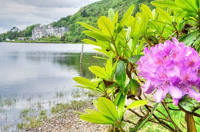 Flora And Fauna Photograph - Rhododendron On Lake Kylemore, Kylemore Abbey Galway by Deborah Squires