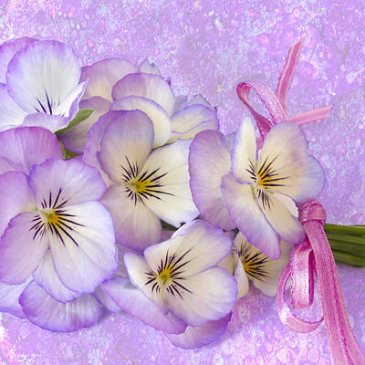Ribbon Photograph - Ribboned Pansies  by Sandra Foster
