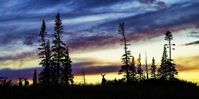 Doe Photograph - Ridge Sihouette by Chad Dutson