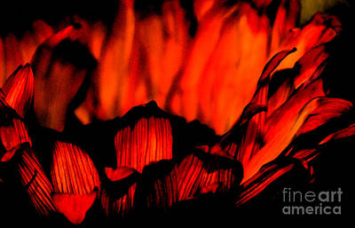 Flame Light Digital Art - Ring Of Fire by Linda Knorr Shafer