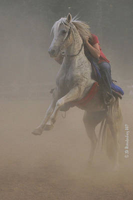 Horse Photograph - Rising In The Dust by JD Brandenburg