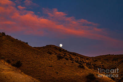 Rising Moon Print by Robert Bales