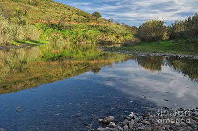 Creek Photograph - River Mirror by Angelo DeVal