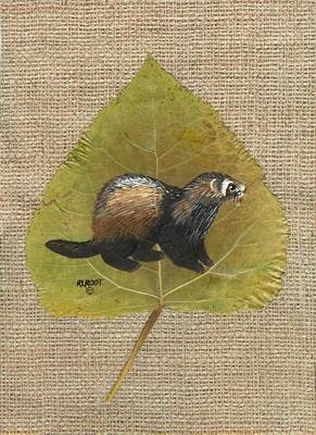 Otter Mixed Media - River Otter by Ralph Root