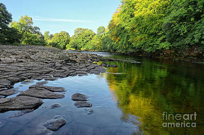 Abbey Photograph - River Swale, Easby by Stephen Smith