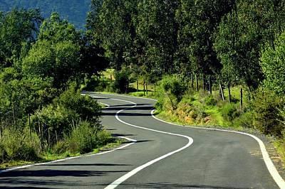 Road To Tapijue Print by Fernando Lopez Lago