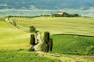 Tuscan Hills Photograph - Road To Terrapille by Michael Blanchette