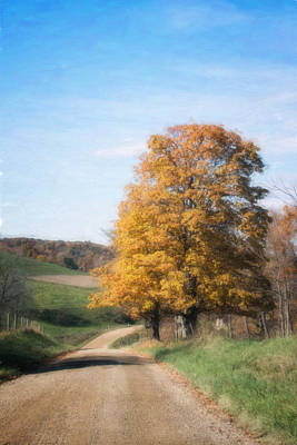 Dirt Roads Photograph - Roadside Tree In Autumn by Tom Mc Nemar