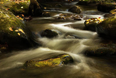 Autumn At Roaring Fork River Print by Carol Mellema