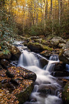 Roaring Fork Waterfall At Autumn Print by Andrew Soundarajan
