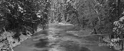 White River Scene Photograph - Robson River Black And White by Adam Jewell