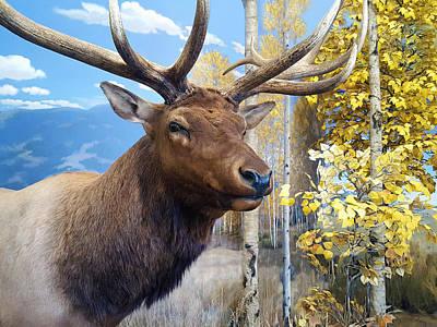 Rocky Mountain Elk Print by Karon Melillo DeVega